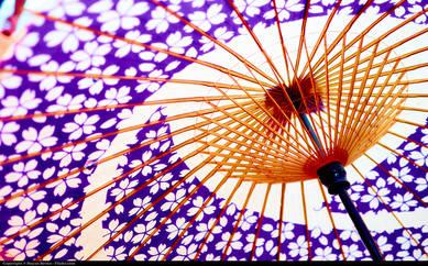 Восточный зонт