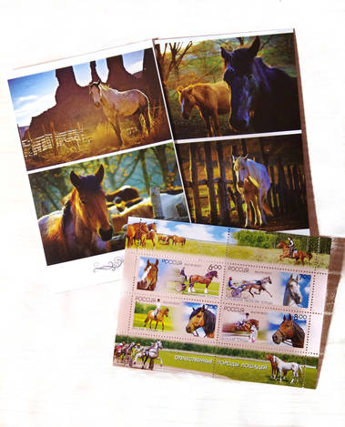 Комплект «Лошади» (открытка+марка)