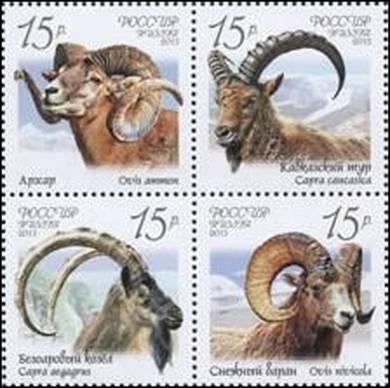 Фауна России. Дикие козлы и бараны